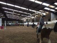 HorseRiding14
